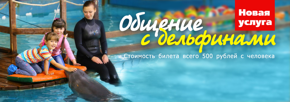 Dolphin banner Dolph-Ob