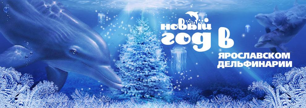 Новый год в Дельфинарии